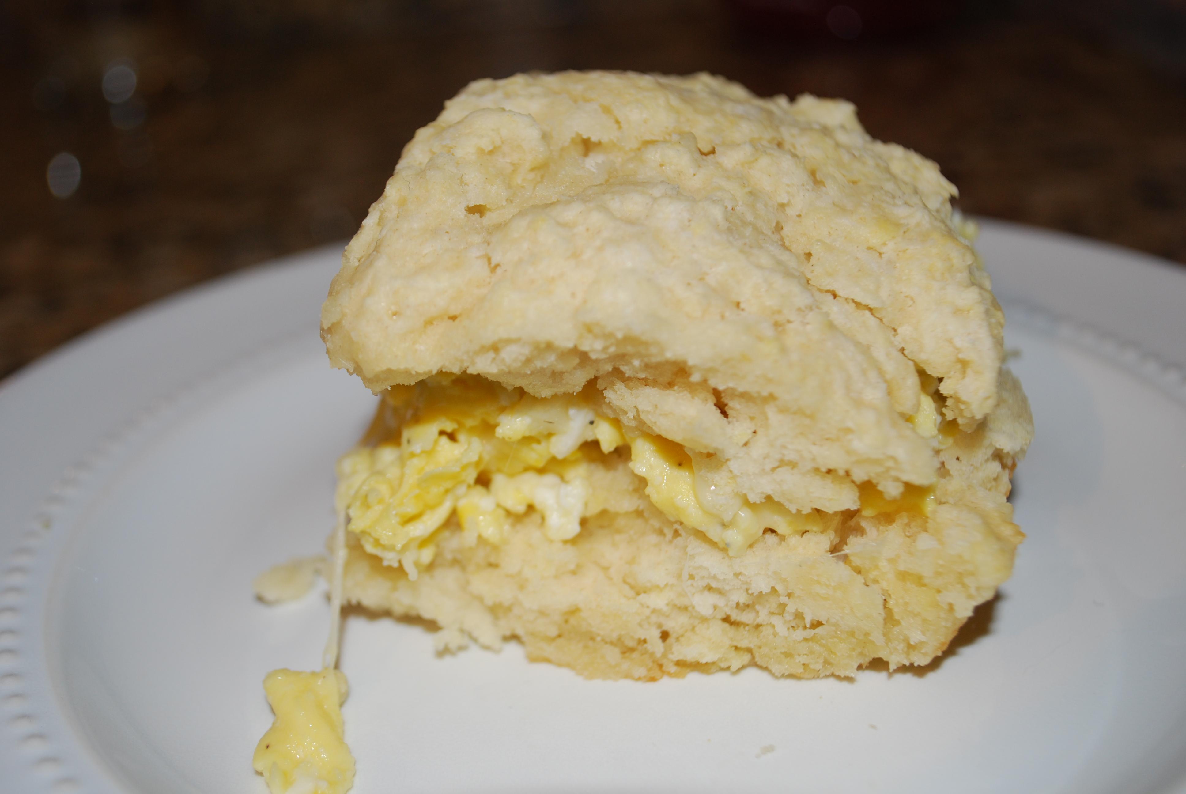 """... Study"""" (Recipe: Baking Powder Biscuits)   Oven Lovin' Runnin"""